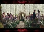 fond ecran  Twilight : Breaking Dawn - Part 1